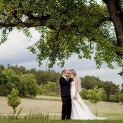 romantisches Hochzeitsbild unter einem Baum