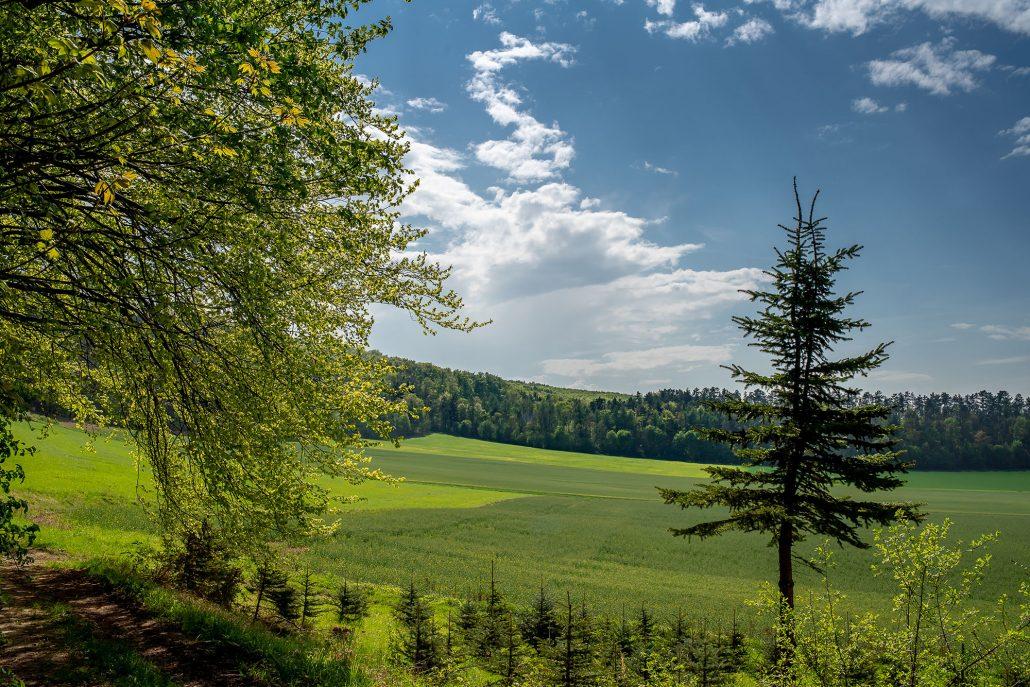 unterwegs auf dem Thüringer Drei-Türme-Weg